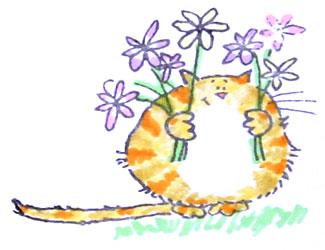 cat-card